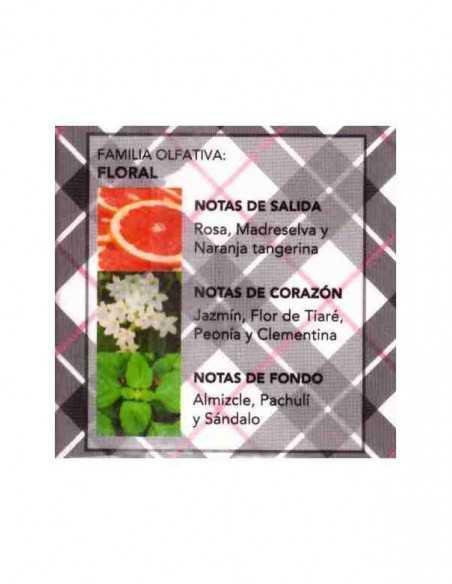 Notes-Fragance-Parfum-prady-london-grossiste-parfum-generique