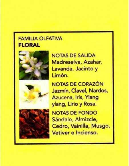 Notes-Fragance-Parfum-prady-ana-grossiste-parfum-generique
