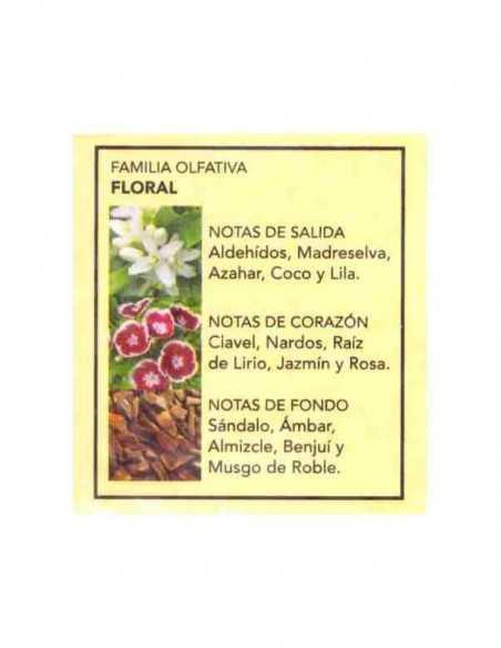 cleot-Notes-Fragance-Parfum-prady-london-grossiste-parfum-generique