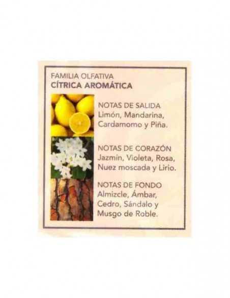 oktheone-Notes-aromes-Fragance-eau-de-toilette-prady-grossiste-parfum-generique